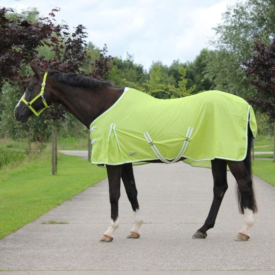 QHP Fly Blanket Color