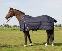 Harry's Horse Highliner 500 Black Iris
