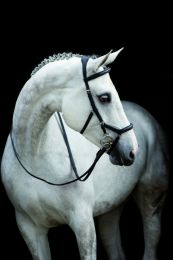 Horseware Rambo Micklem Comp Rein English Leather