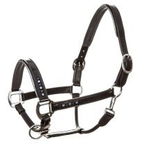 Imperial Riding Halter leather Lavarre