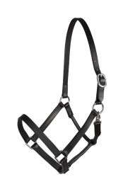 PFIFF Basicline leather headcollar