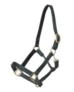 Pfiff Leather stable halter