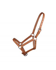 "QHP Leather Halter ""Chico"""