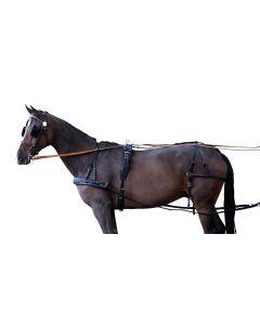 "PFIFF Single-carriage harness ""Standard"""