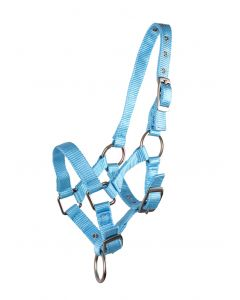 QHP Halter foal Baby-blue 04