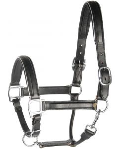 Harry's Horse Halter leather, black with trim