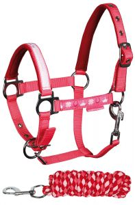 Harry's Horse Headcollar set Diva