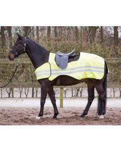 Harry's Horse Exercise sheet Reflective