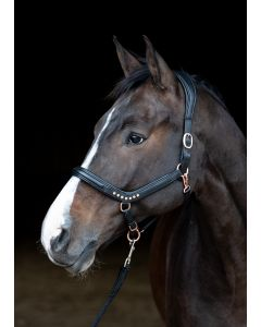 Harry's Horse Halter leather Rosegold anatomic