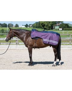 Harry's Horse Exercise sheet 0gr fleece