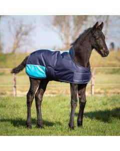Harry's Horse Foal Blanket TwoTone