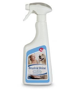 Sectolin Brush & Shine