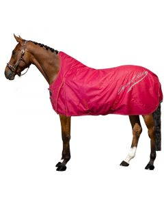 Imperial Riding Outdoor rug Super-dry 100 grams