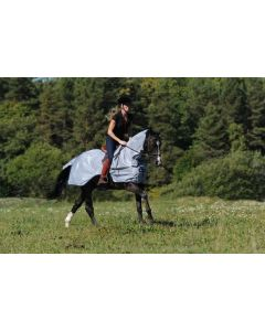 Bucas Buzz-Off Riding Fly Exercise Blanket
