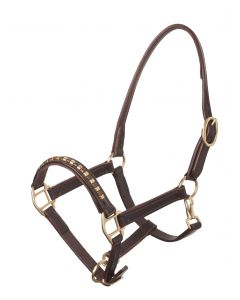 MHS Lacquer Leather Halter with Studs