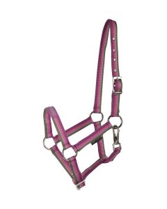 Harrys Horse Halter with Text