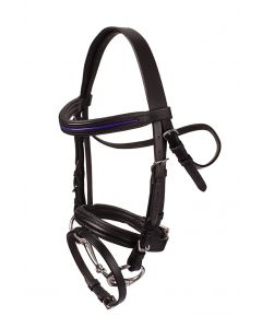 HB Bridle Purple